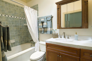 your-sparkling-bathroom-on-cleaning-day
