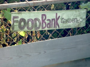 p-patch-foodbank-sign